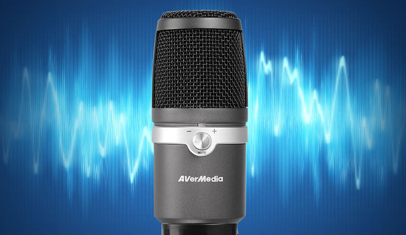 AVerMedia AM310 USB Microphone Plug And Play